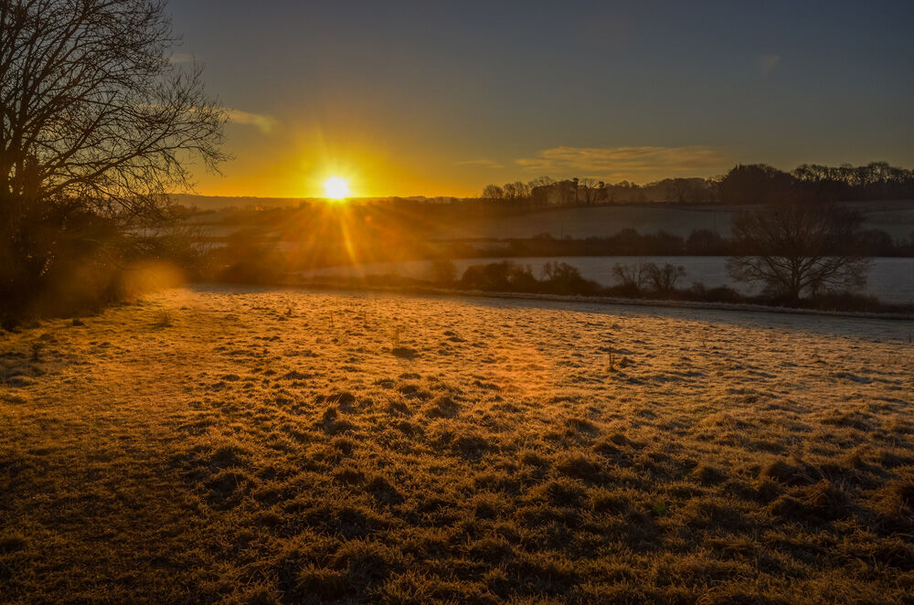 Frosty sunrise II