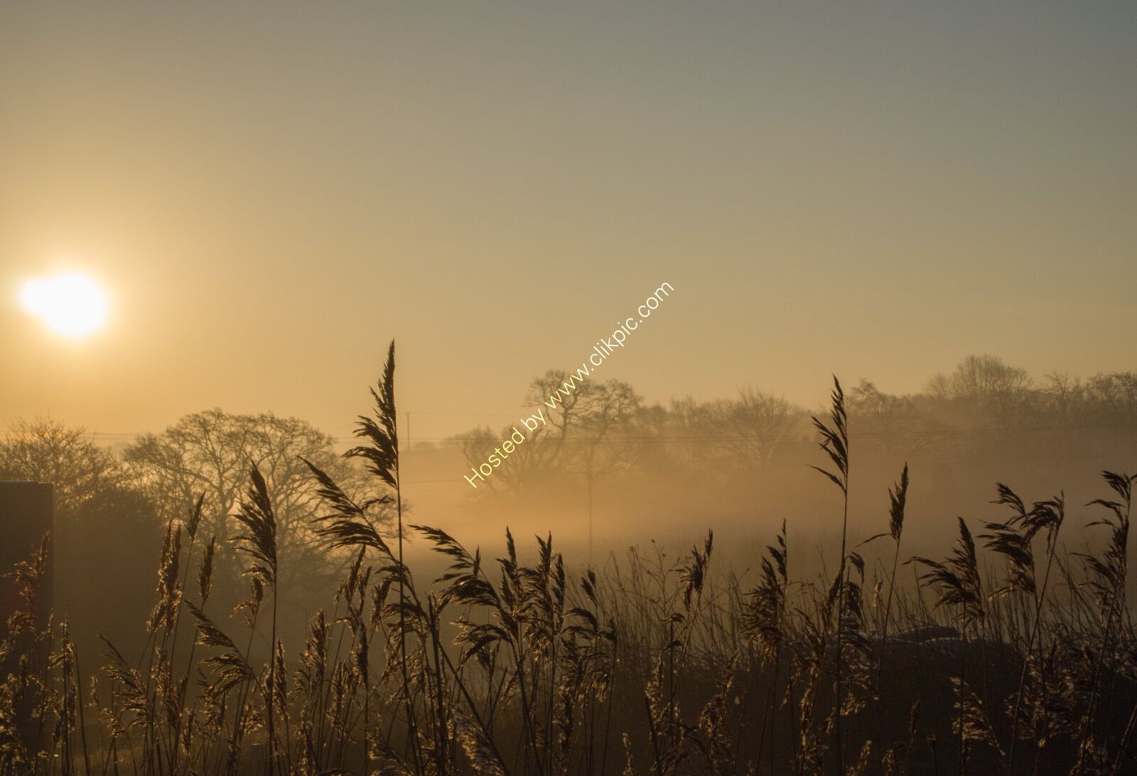 Misty morning3