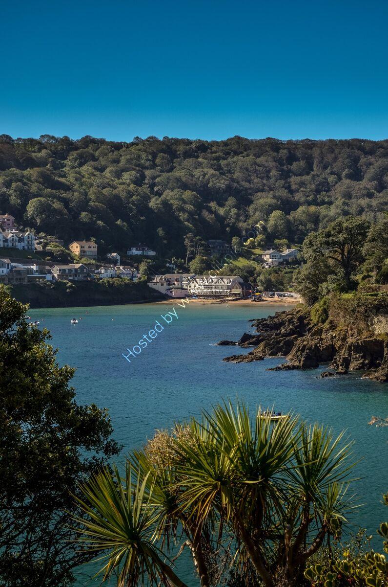 Tropical Devon (1 of 1)