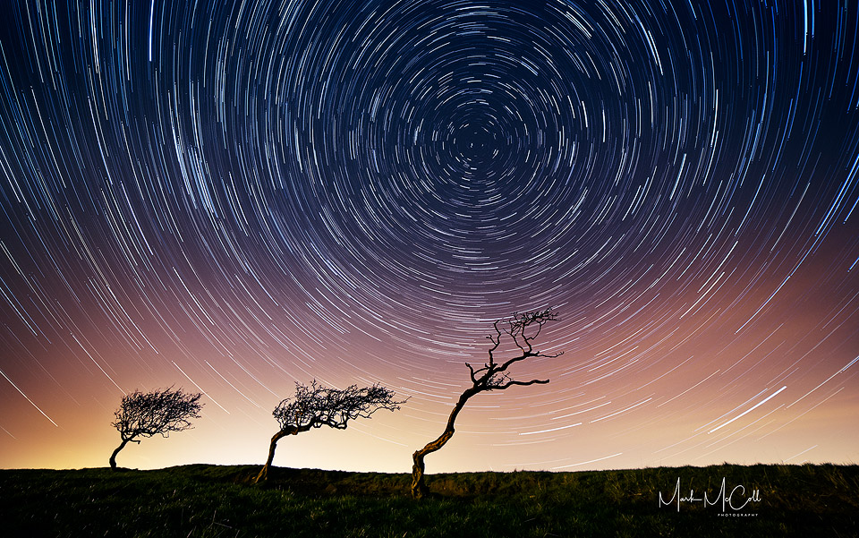 Tree Startrail, Ayrshire, Scotland