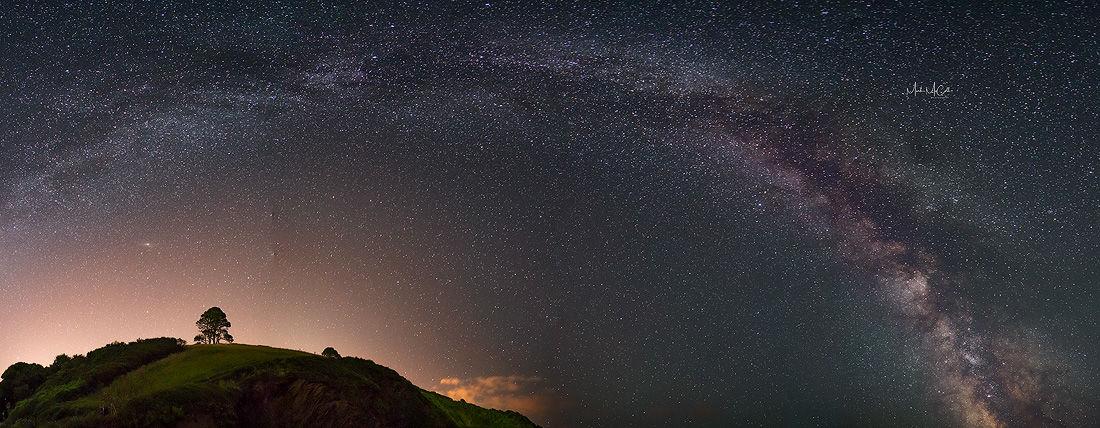 Milky way and tree, Cornwall