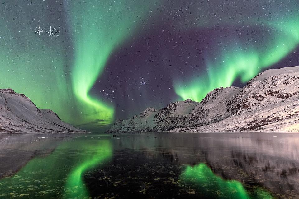 Ersfjordbotn Aurora, Tromso, Arctic Norway