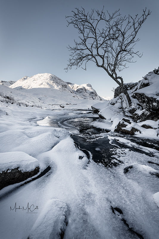 Tree and Sisters, Glencoe, Scotland