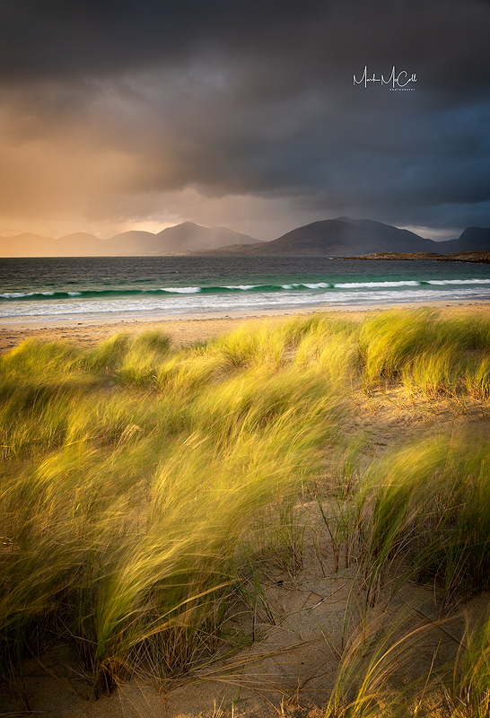 Golden light, Luskentyre, Harris, Outer Hebrides