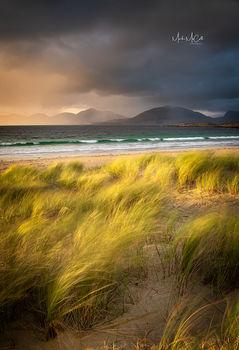 Golden light, Luskentyre, Harris, Outer Hebrides