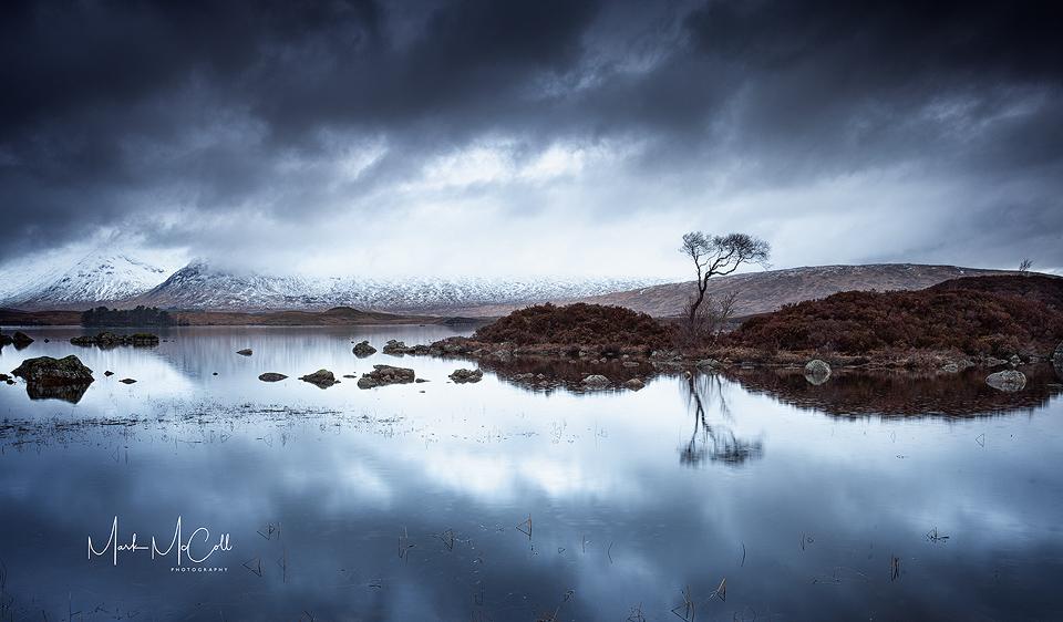 Rannoch Moor Tree Reflections, Glencoe, Scotland