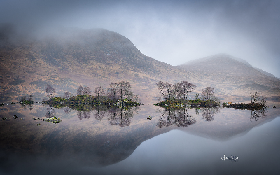 Tree reflections, lochan na h-achlaise, Rannoch moor, Glencoe Scotland