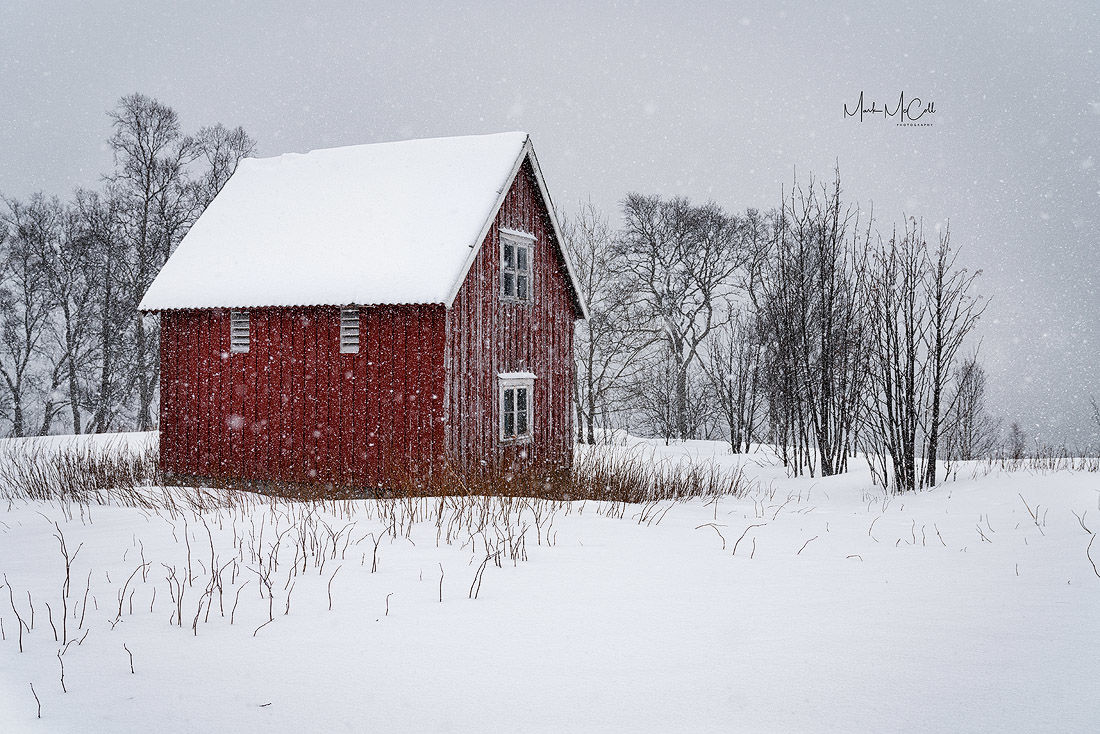 Rorbu in snowstorm, Senja, arctic Norway