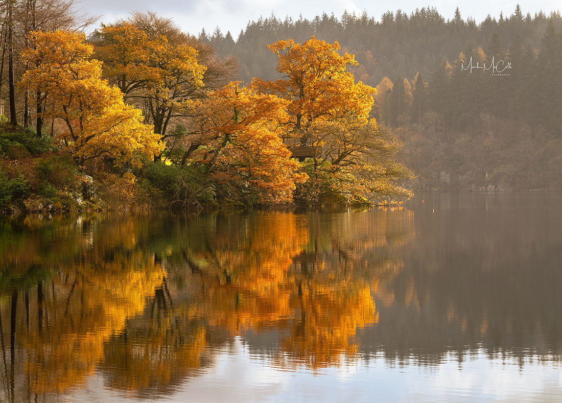 Autumn colours, Loch Ard, Scotland