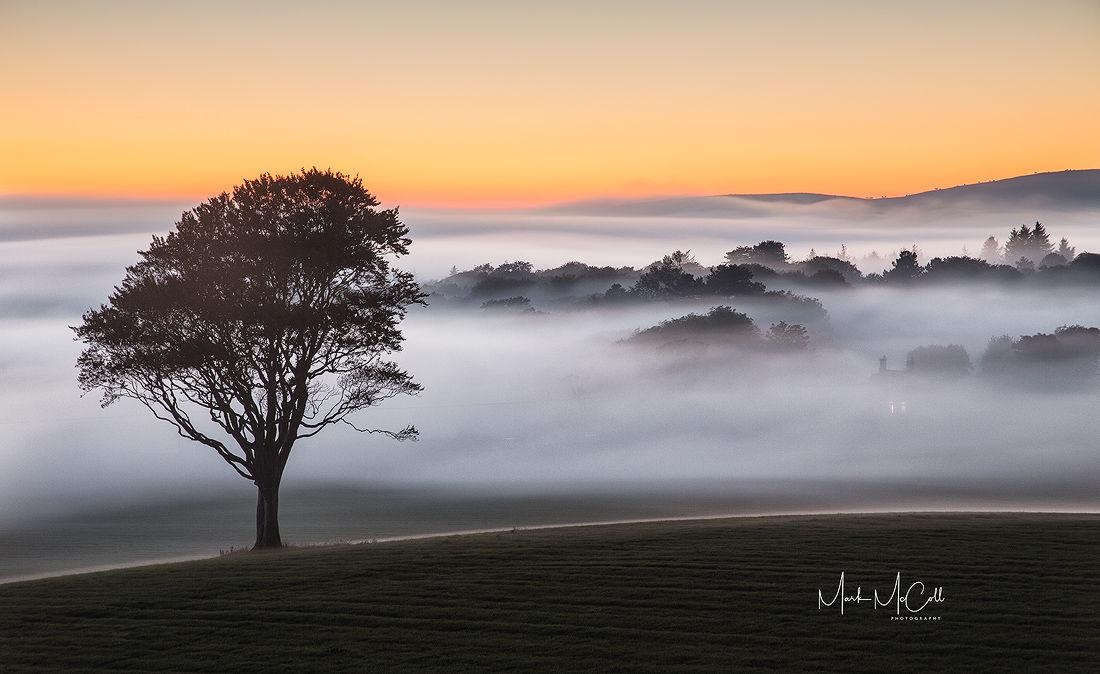 Against the Mist, West Kilbride, Ayrshire