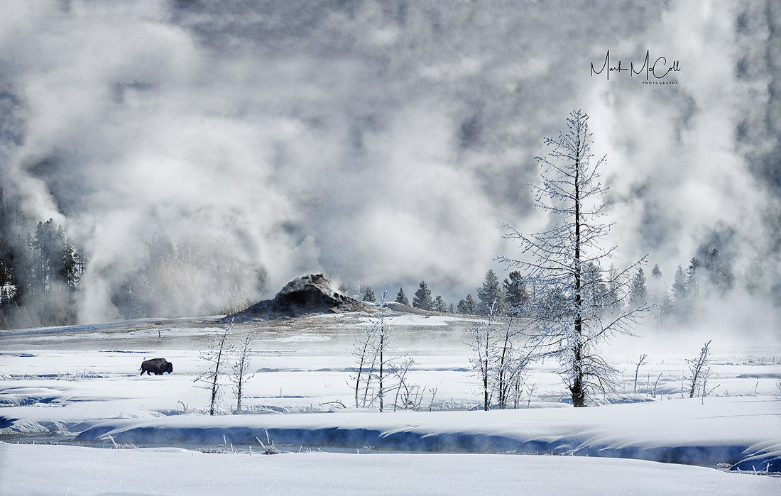 Apocalypse, Yellowstone NP, Montana