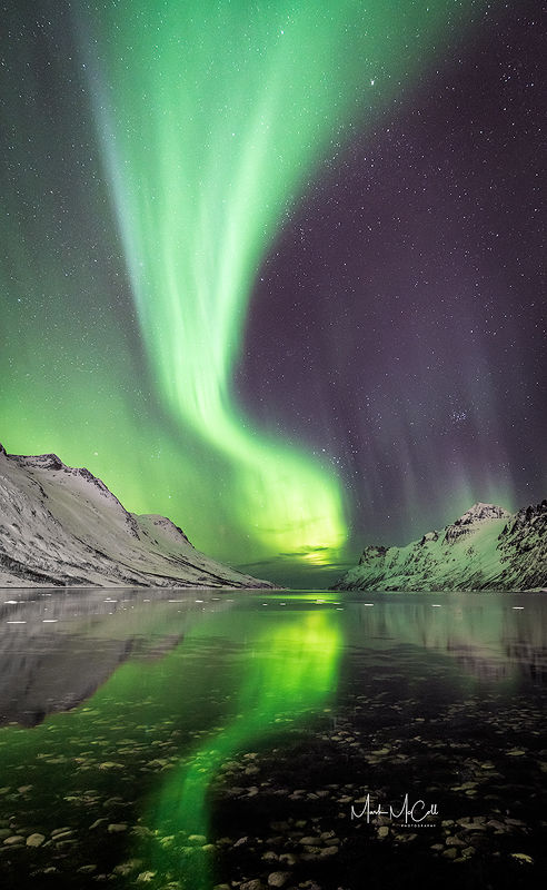 Aurora reflected in a fjord, Arctic Norway