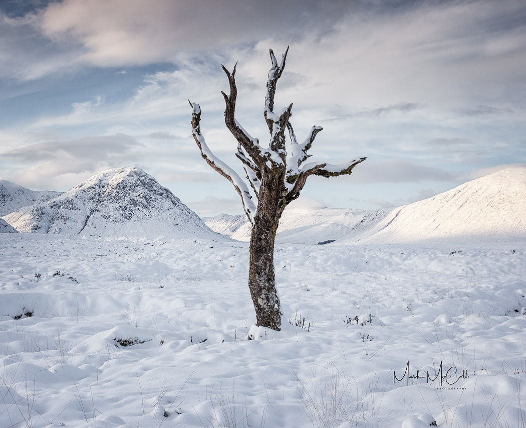 Torn and twisted, Glencoe, Scotland