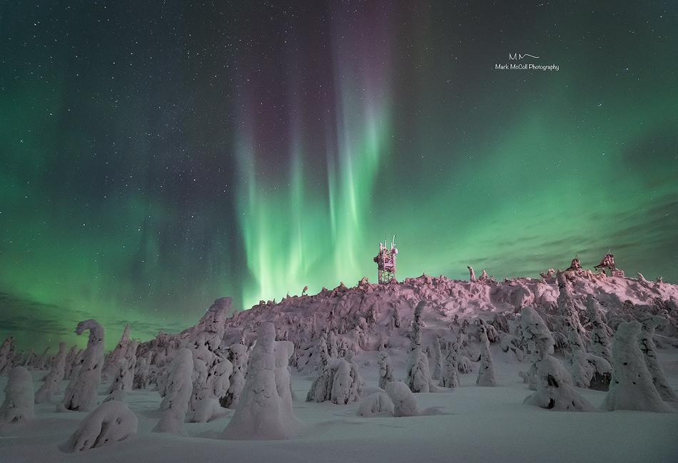 Frozen forest aurora, Finland