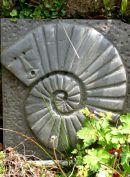 'Ammonite man', slate, 36x42cm