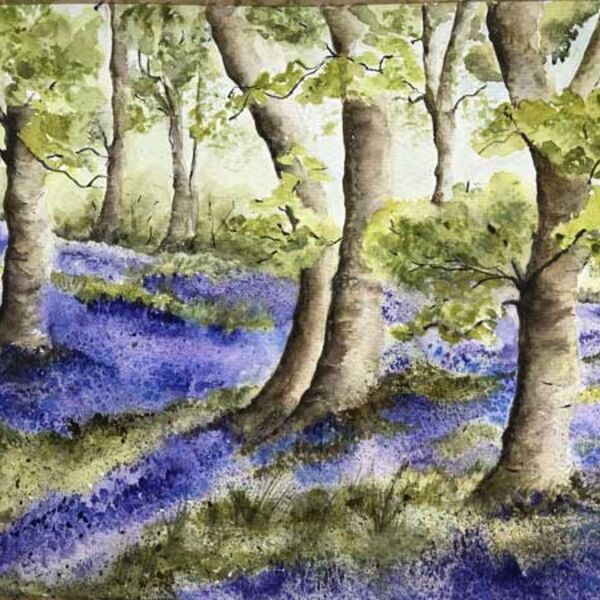 Bluebell Woods - after Peter Woolley