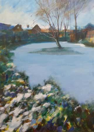 Suburban Snowfield