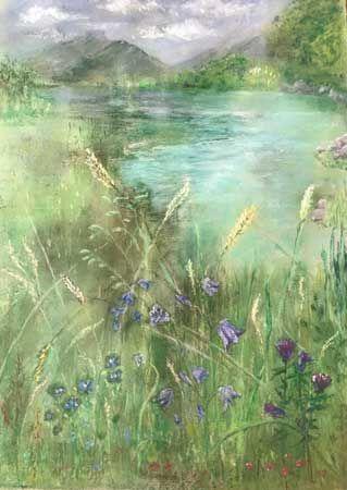 Wildflowers & Grasses