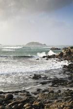 Round Island I