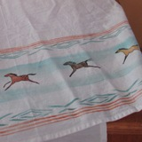 Pony Dish Towel Aqua Dream