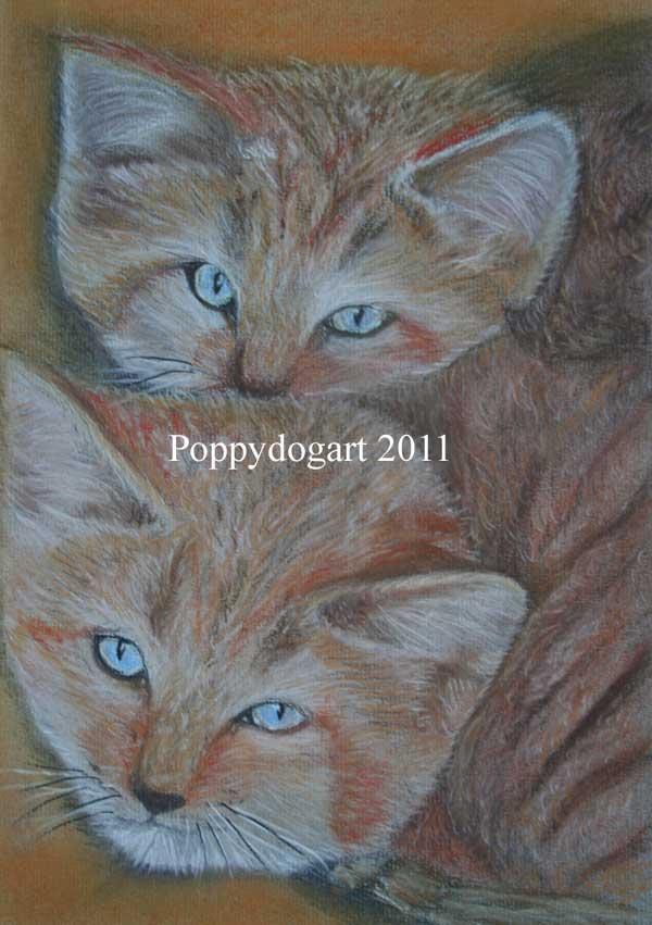 Wild sand cats pastel