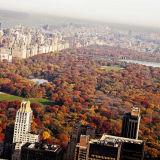 Central Park's autumn colours light up Manhattan