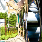 Chelsea Flower Show display reflected