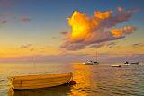 Rosebud Sunset