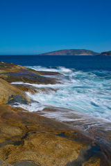 Thistle Cove