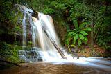 Lower Lilydale Falls
