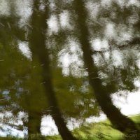 A River Pastoral