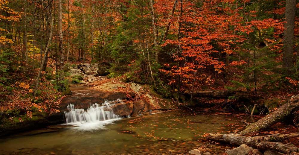 The Basin - Cascade à l'automne - pano