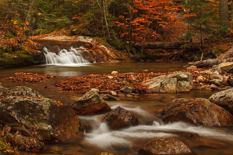 The Basin - Cascade à l'automne
