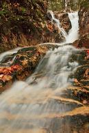 Beecher Cascade à l'automne