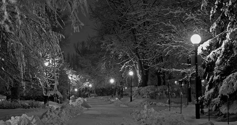 Magie de l'hiver la nuit en ville