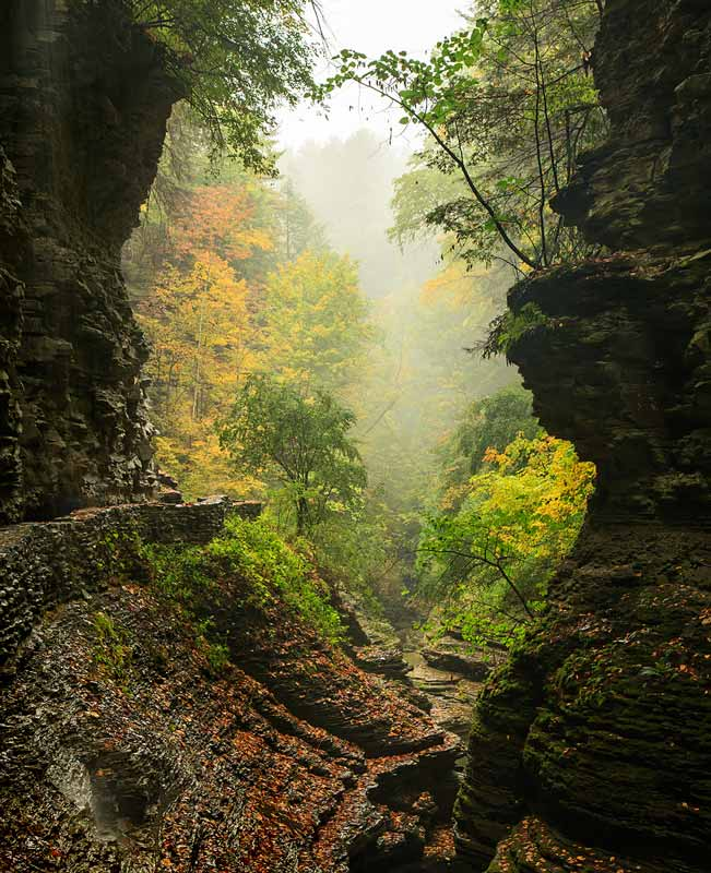 Canyon, Watkins Glen