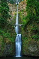 Multnomah Falls - Vertical
