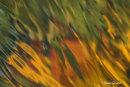 Flammes liquides