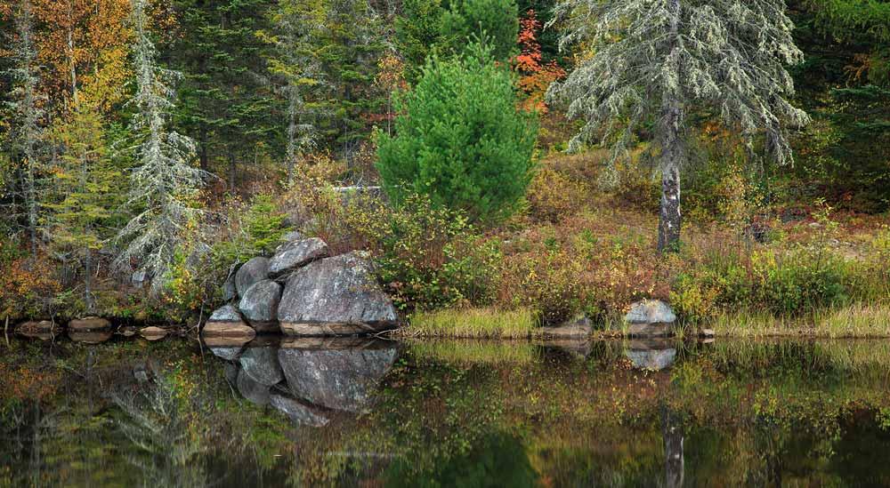 Étang avec rochers et réflexion à l'automne
