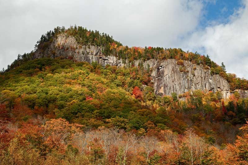 Falaise à l'automne