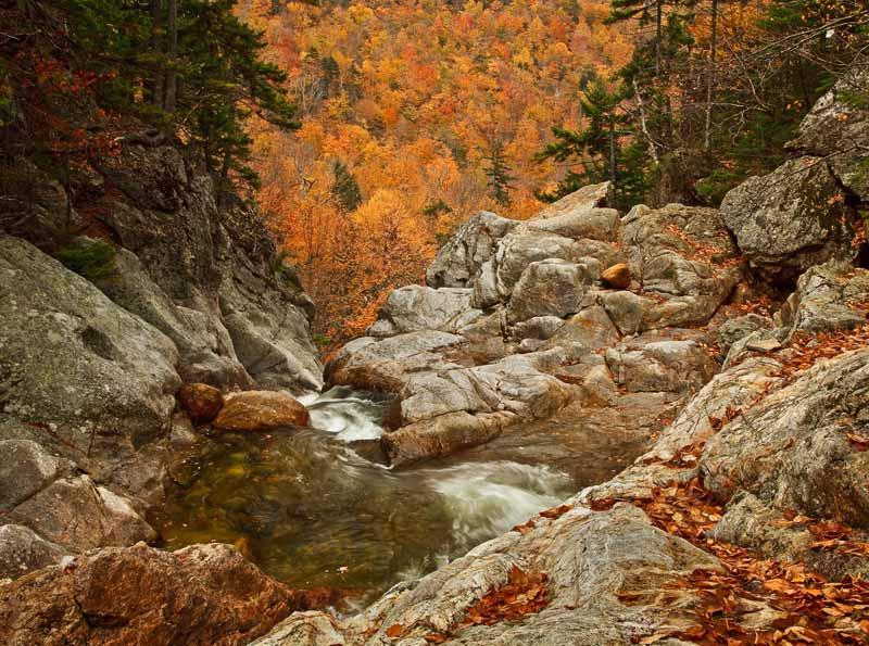 Ellis River à l'automne