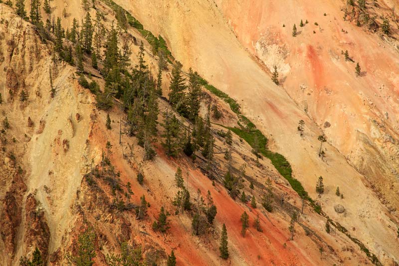 Grand Canyon du Yellowstone - Detail 3