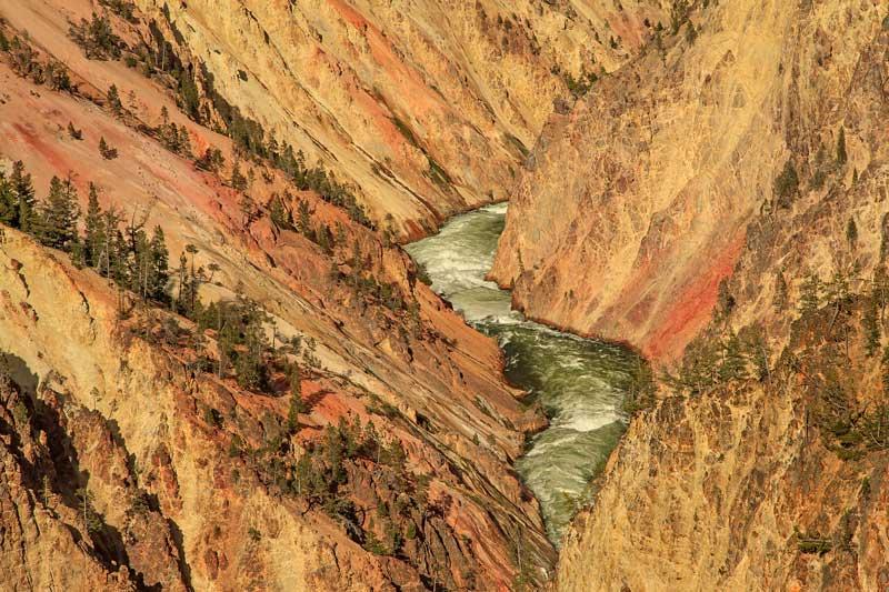 Grand Canyon du Yellowstone - Détail 1