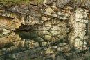 Réflexion à Horseshoe Lake - Détail 3