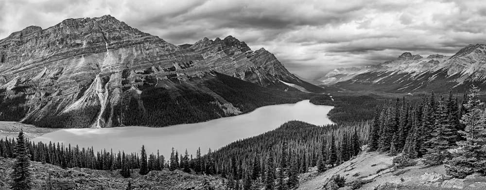 Panorama de Peyto Lake - noir et blanc