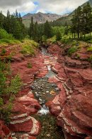 Red Rock Canyon - Vertical
