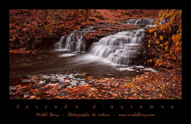 Cascade d'automne - Affiche