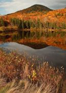 Saco Lake à l'automne