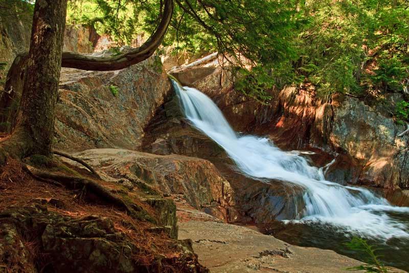Small Falls - 3e chute avec arbre