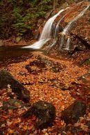 Thomson Falls à l'automne - vertical